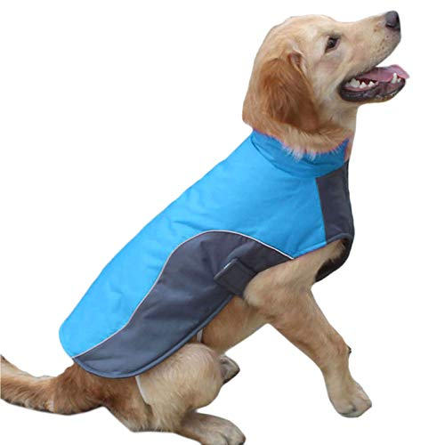 Alfie Pet by Petoga Couture - Foxglove Waterproof Coat - Color: Blue, Size: Small -