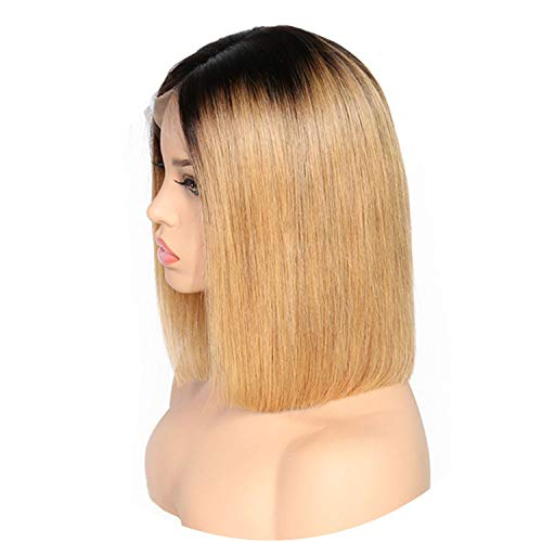 Lace Front Human Wigs For Black Women Pre Plucked Full Brazilian Remy Ombre Straight Short Bob Wigs With Baby Hair,T1B/27,8inches -