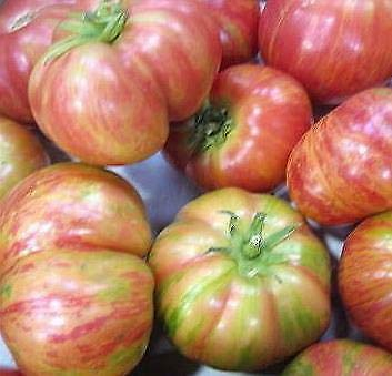 Details About Tomato Vintage Wine 1,000 Seeds Need More? Ask