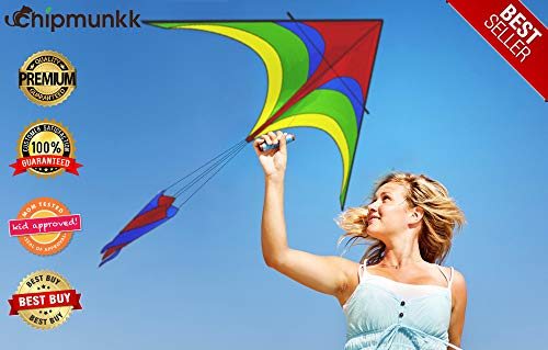 4ef4dc0ef Easy to Fly Large Nylon Bird Kite for Kids and Adults for Beach Trip &  Outdoor