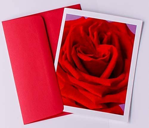 Rosebud Note Cards Original Elegant Photographic Smooth/Matte White Blank 4.25