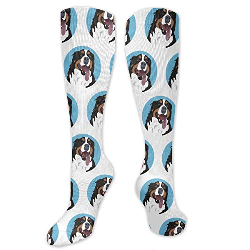 Unisex Fun & Funky Colorful Dress Socks (Funny Bernese Mountain Dog Face,23.6 Inches) -