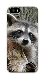 Baby Raccoon 005 Iphone 5 5S Hard Protective 3D Cover Case by Lilyshouse wangjiang maoyi