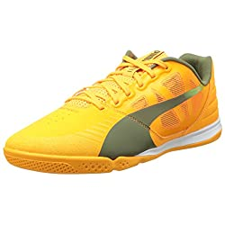 PUMA Men's Evospeed Sala Soccer Shoe