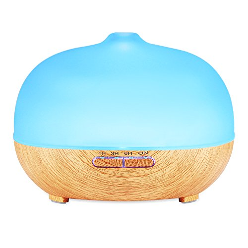 Frosted Essential Diffuser Ultrasonic Humidifier