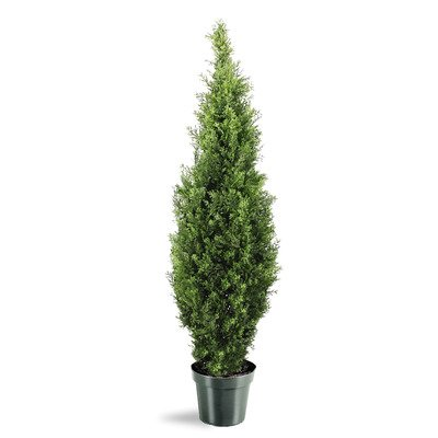 National Tree 48 Inch Arborvitae Tree in Dark Green Round Plastic Pot (LMC4-700-48-6) by National Tree Company