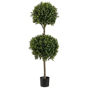 4' Double Ball-shaped Boxwood Topiary in Plastic Pot Two Tone Green 26