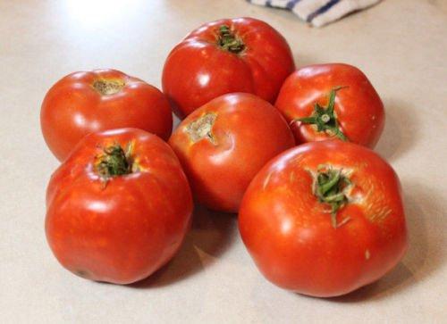 jetsetter tomato seeds - 8