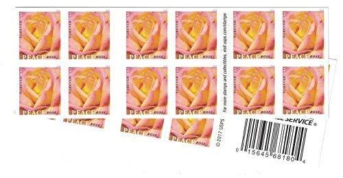 Roses Postage - Peace Rose USPS Forever Stamp (2 Booklets (40 Stamps))