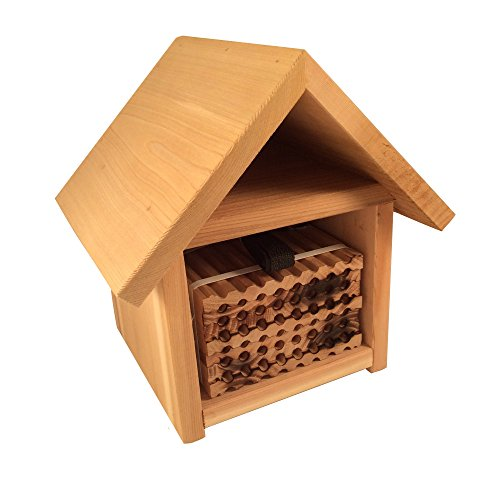 Crown Bees Mason Bee House and 48-Hole Wood Nesting Tray Set, Spring Chalet (Native Bee House)