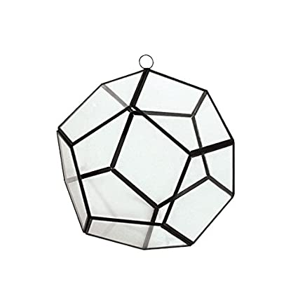 Amazon Com Cys Hanging Modern Geometric Clear Glass Plant Terrarium