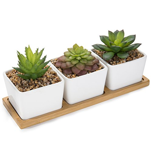 MyGift Artificial Succulent Plants in Square Ceramic Planters with Bamboo Tray by MyGift