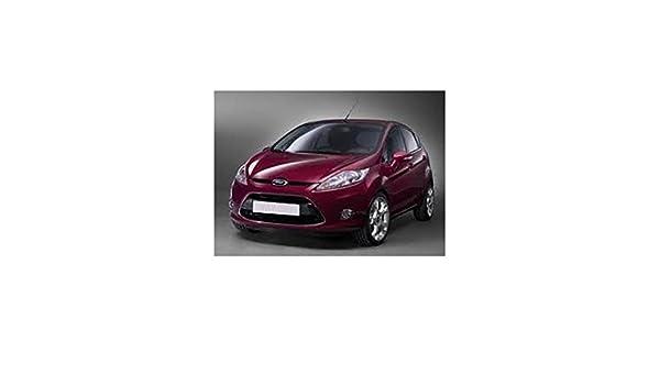 Zesfor Pack de Leds para Ford Fiesta (2008-2012): Amazon.es: Coche y moto