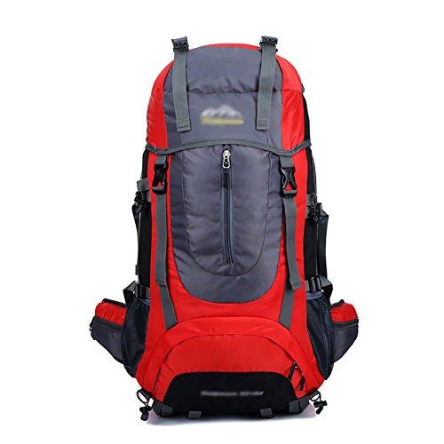 HWLXBB Outdoor Bergsteigen Tasche 65L Anti-Spritzwasser Wasser Reise Reise Bergsteigen Rucksack Männer und Frauen Walking Bergsteigen Tasche ( Farbe : 4* )