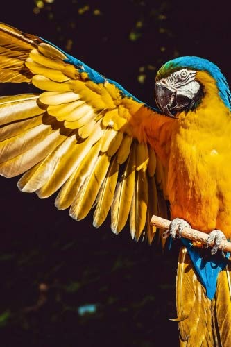 (Blue and Gold Macaw with Outstretched wing Journal: Take Notes, Write Down Memories in this 150 Page Lined Journal)