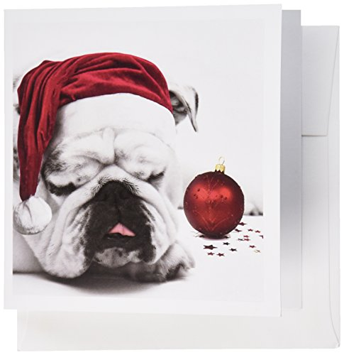 (3dRose Sleeping Bulldog in a Santa Hat Christmas Card photo courtesy of Esther Matheus - Greeting Cards, 6 x 6 inches, set of 12 (gc_62826_2) )