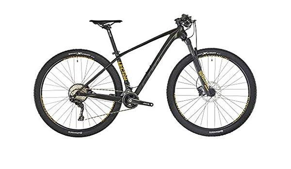 Ghost Lector 2.9 LC U 29R 2019 - Bicicleta de montaña, Color Night Black/Titanium Gray/Spectra Yellow, tamaño Small: Amazon.es: Deportes y aire libre