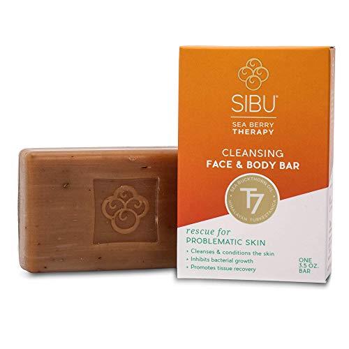 Sibu Beauty Cleansing Face & Body Bar, 3.5 oz