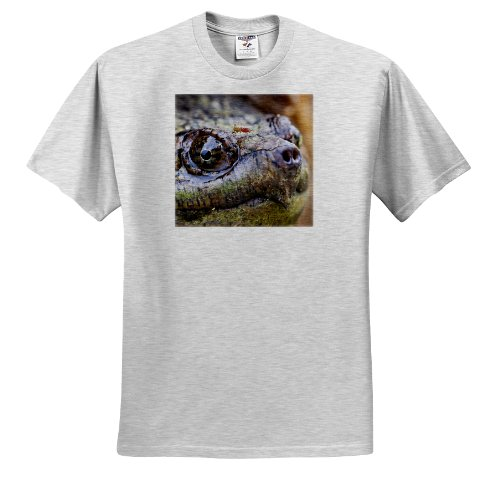 Danita Delimont - Turtles - New Jersey, Great Swamp NWR. Common Snapping Turtle - US31 JGL0041 - Jim Gilbert - T-Shirts - Adult Birch-Gray-T-Shirt 2XL - Commons Jersey New