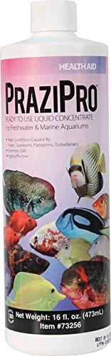 Hikari Usa AHK73256 Prazipro for Aquarium, - Hikari Aquarium Fish