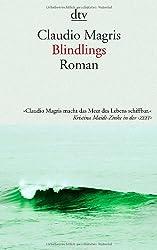 Blindlings: Roman
