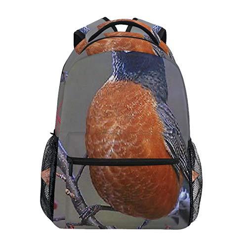 Backpack Tree Seed Rest Red Bird School Bags Bookbags for Teen/Girls (Best Minecraft Seeds Ipad)