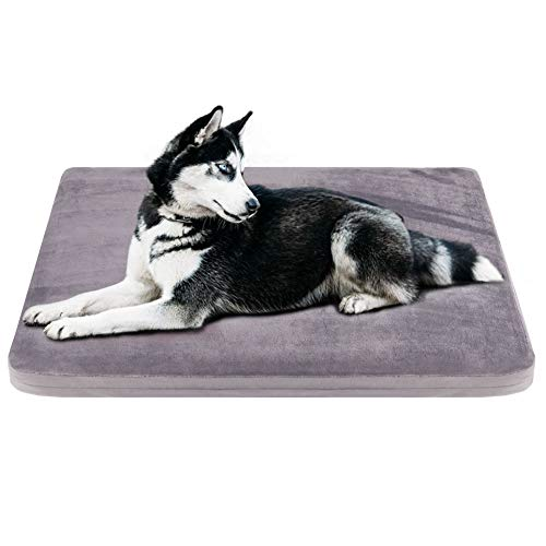 JoicyCo Dog Bed Medium Crate Pad Dog Mat Mattress Pet Beds Foam Cushion with Washable Cover Anti-Slip 31.50'