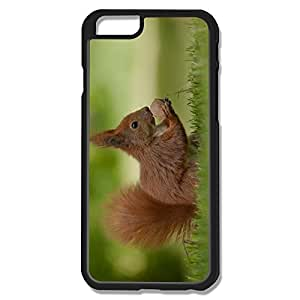 IPhone 6 Cases Squirrel Design Hard Back Cover Shell Desgined By RRG2G