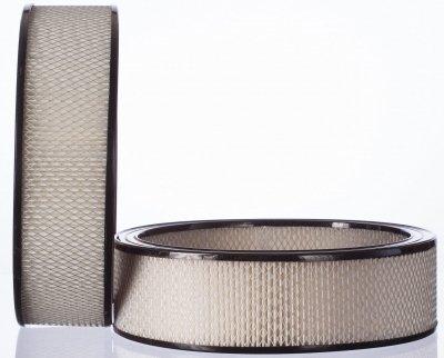 Premium Guard PA3181 Air Filter