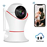 Cheap 1080P Wireless IP Camera, 360 WIFI Home Surveillance Indoor security camera with 3D Panorama View,Two-Way Audio & 32ft Night Vision for Pet/Baby Monitor, Motion Detection, PTZ, Cloud Service Available