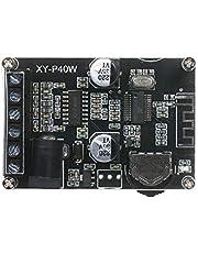 Festnight Stereo Audio Power Amplifier Board 40W DC 12/24V Supply Power Amplifier Module PA Modules