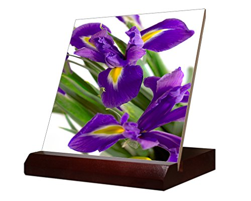 Iris Ceramic Tile - 7