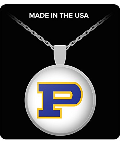 Asterisk The Brand Dillon Panthers Logo Necklace Charm Pendant Panthers Friday Night Lights Gift Accessories Merchandise Shirt Sticker Decal Art Poster