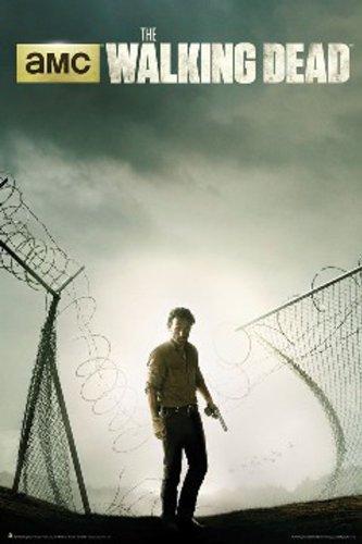 The Walking Dead Season 4 Key Art TV Poster