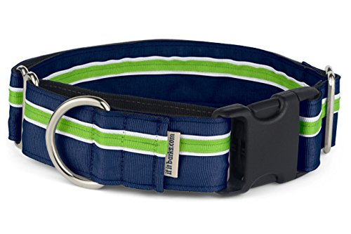 "If It Barks - 1.5"" Martingale Collar for Dogs - Quick Snap Release Buckle - Adjustable - Nylon - Strong and Comfy - Ideal for Training - Made in USA - Large, Finley"