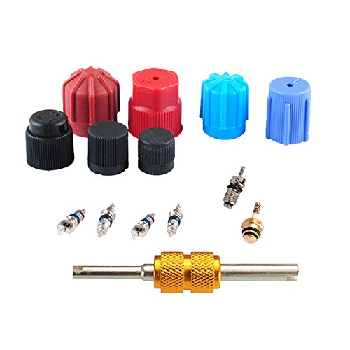 AC A/C System Cap & Valve Service Air Conditioning Valve Core Seal Kit with Remover-Installer Tool by (A/c Service Valve)
