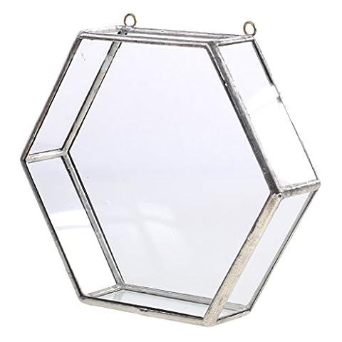 Dovewill Modern Glass Hanging Geometric Terrarium Hexagon Succulent Planter 15.5x4.5x14cm - silver (Hexagon Wall Planter)