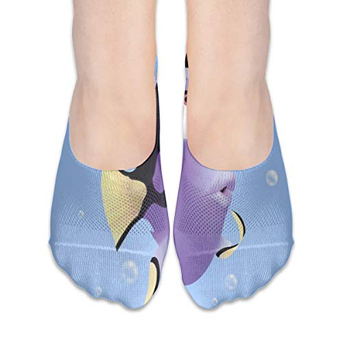 No Show Socks Fish Beautiful Animals Fantastic Womens Low Cut Sock Athletic Invisible Socks for Girl