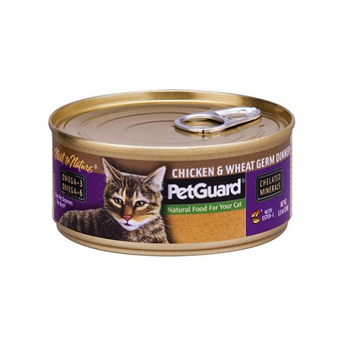 Petguard Chicken and Wheat Germ Dinner 5.5 oz. (Pack of 24), My Pet Supplies