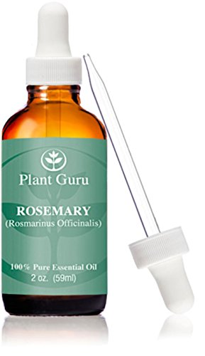 Rosemary Essential Therapeutic Mediterranean environment product image