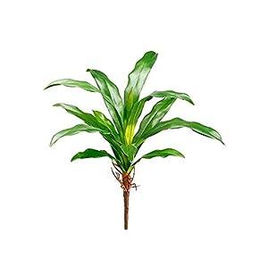 "3pc, Plastic Tropical Bromeliad Leaf Plant - 16"" Tall 5"
