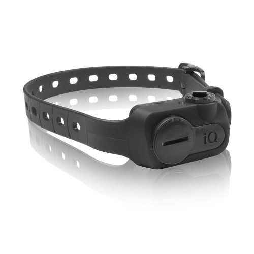 Dogtra Iq No Bark Collar (Black) (Pack of 3) by Dogtra