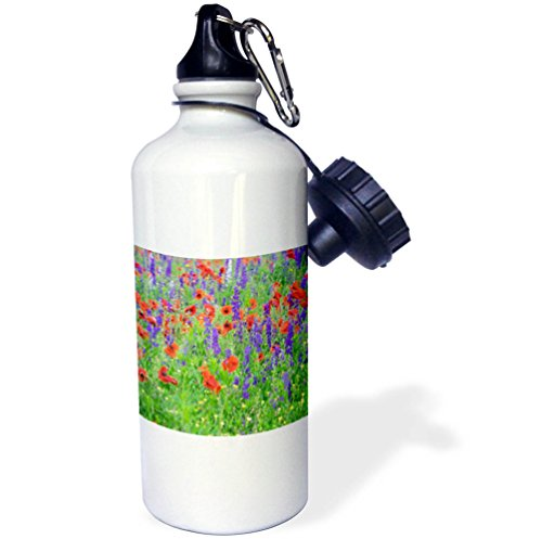 3dRose Danita Delimont - Flowers - Poppy field with wildflowers, Mount Olive, North Carolina, USA - 21 oz Sports Water Bottle (wb_279269_1)