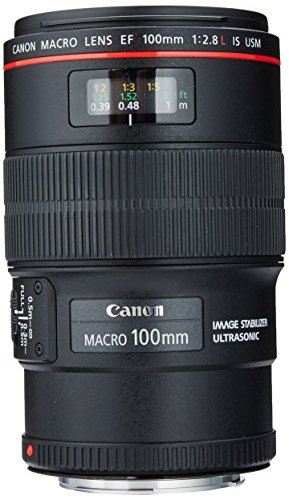 Canon EF 100mm f/2.8L IS USM Macro Lens for Canon Digital SLR Cameras (Canon Camera Manual Focus)