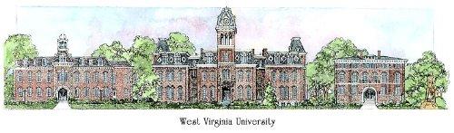 West Virginia University - Collegiate Sculptured Ornament by Sculptured Watercolor Ornaments