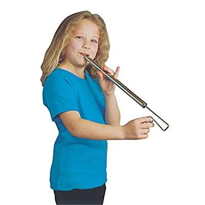 Woodstock Chimes American Slide Whistle Musical Instrument, Nickle-Plated Brass: Toys & Games