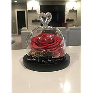 Handmade Eternal Flower Rose with Real Fallen Petals - in Luxury Glass Dome with Wooden Base and Elegant Gift Box - Gift for Valentine's Day Mother's Day Wedding 99