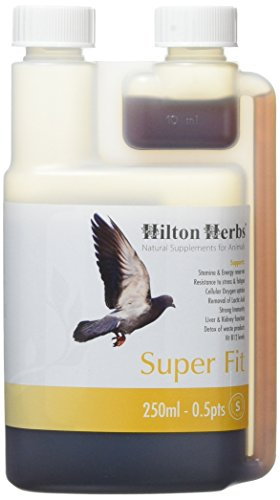 Hilton Herbs 27002 Super Fit-Natural Energy for Racing Pigeons Bottle, 0.5 Pint
