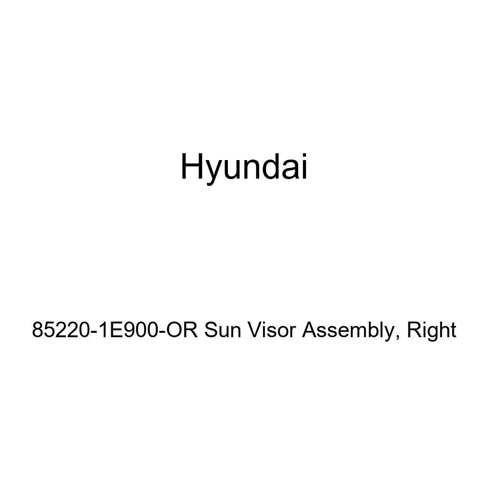 Genuine Hyundai 85220-1E900-OR Sun Visor Assembly Right