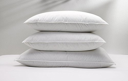 w-hotels-standard-feather-and-down-pillow